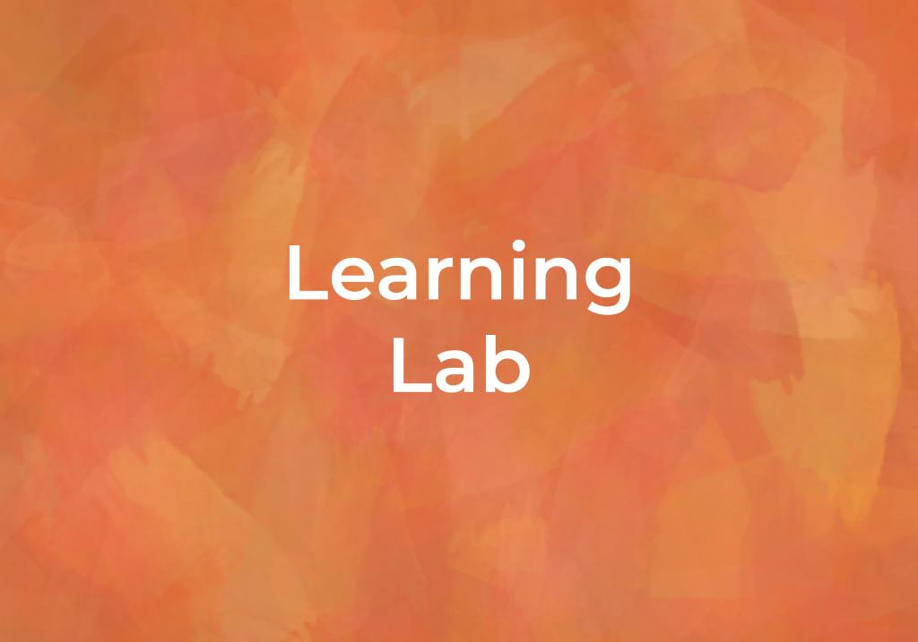Learning Lab programing for Fairmount Community Library in Fairmount NY, Syracuse NY, Camillus NY