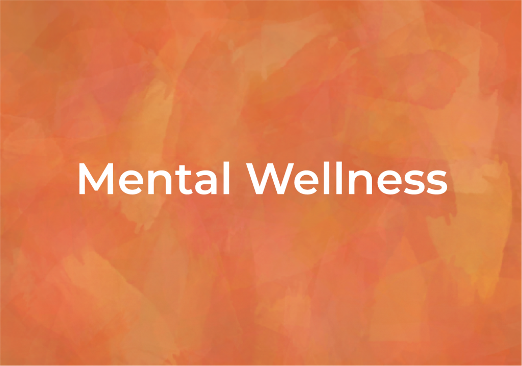 Mental Wellness help and resources, Fairmount Community Library, FCL, in Fairmount, Camillus, Syracuse, New York